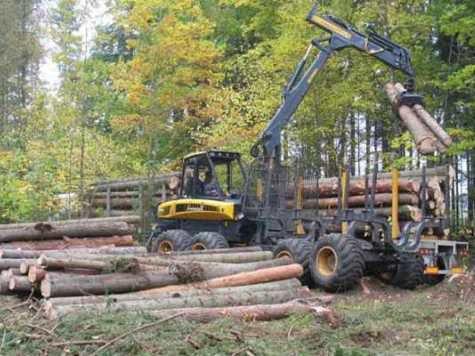 Погрузка леса на грузовик